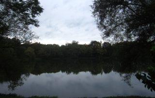 Regentag im Herbst